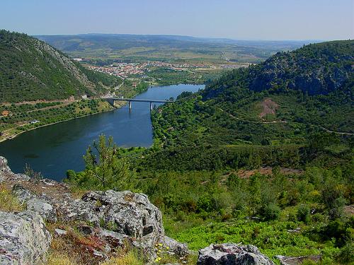 International tagus natural park visit portugal birdwatching - Natura portugal ...